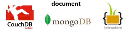 Document NoSQL database