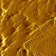 Atomic planes in gold. Tunneling current image, 1 nA setpoint, 50 mV bias.