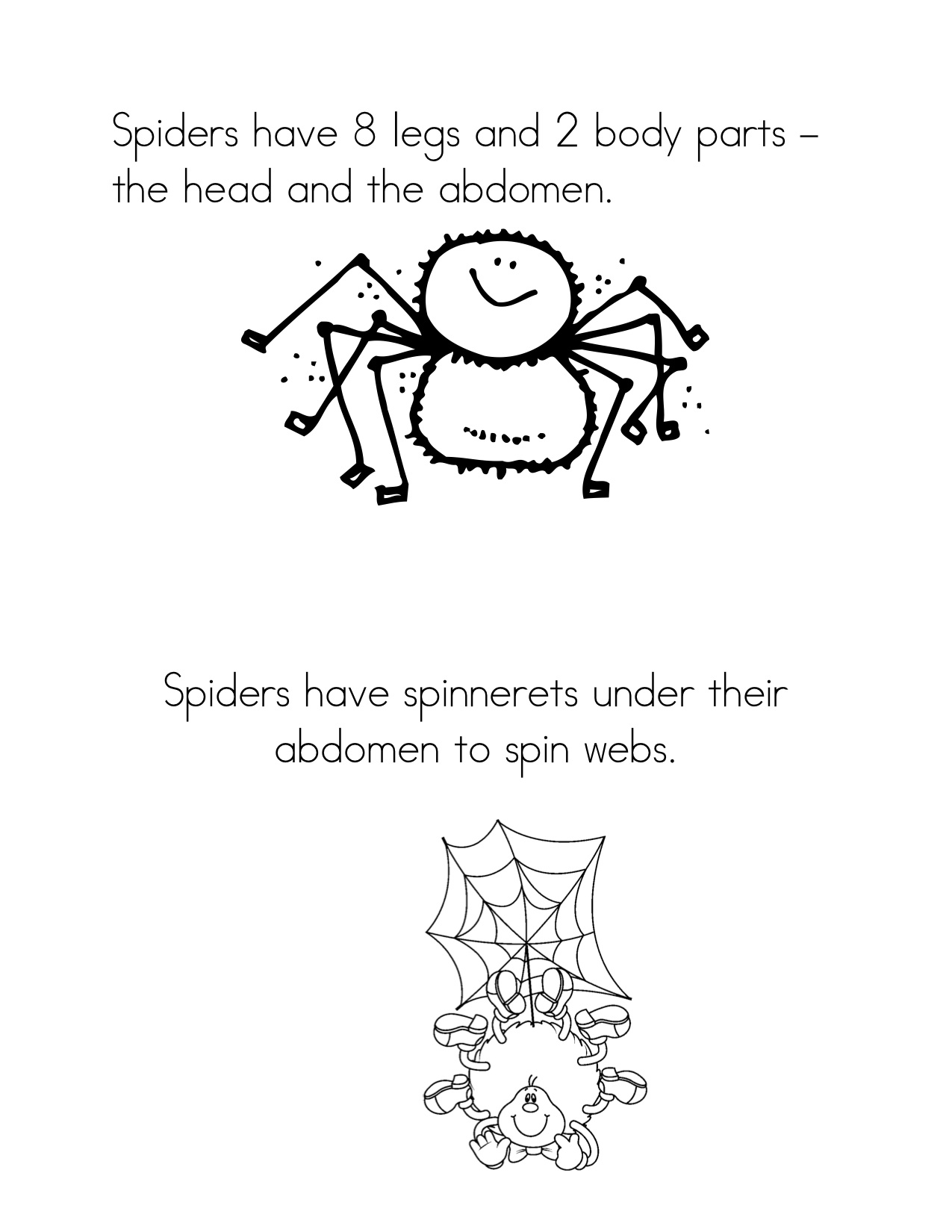 Spider Body Parts Worksheet Draw And Label A Spider
