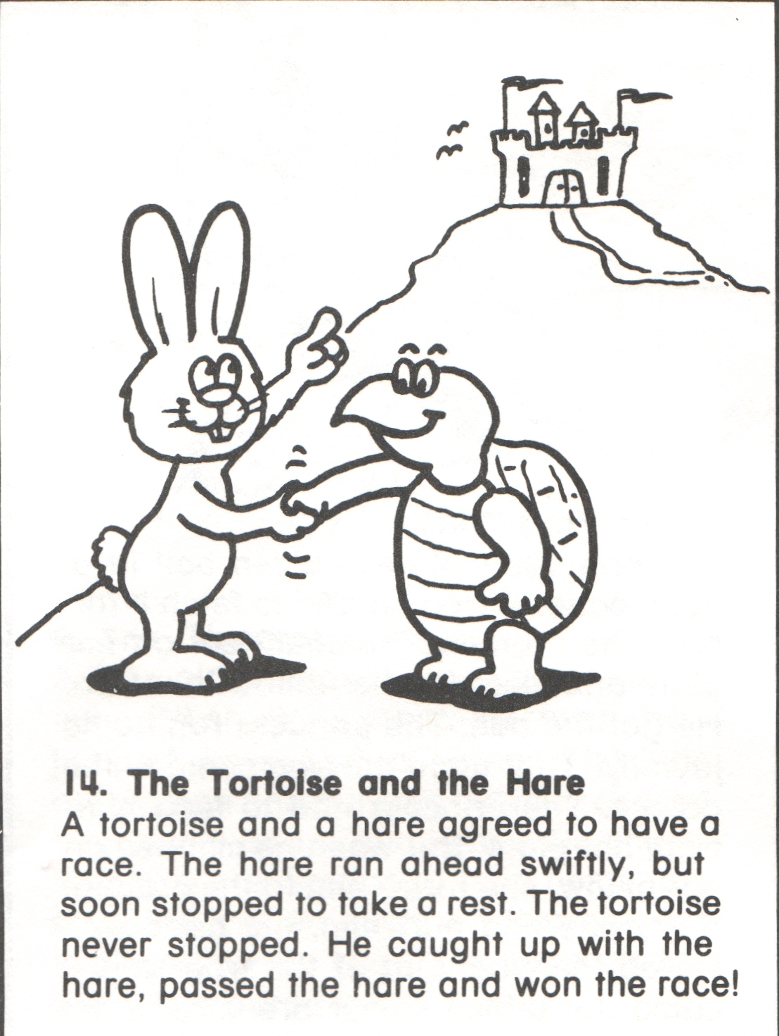14 Tortoise And Hare Story