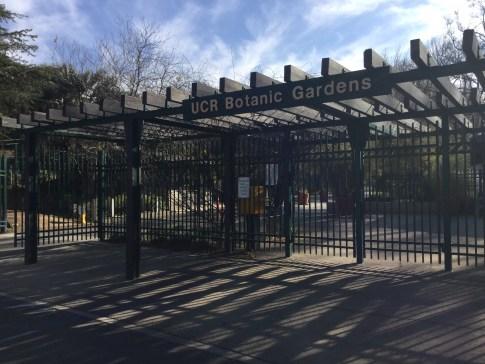 Meet at the entrance at 9:45 am. UC Riverside Botanic Garden. Photo: Garden entrance, Tania Marien, © 2016.