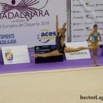 _P2A2499 Lavinia Andreea Tutuianu. Aro (C.D. Huecar)