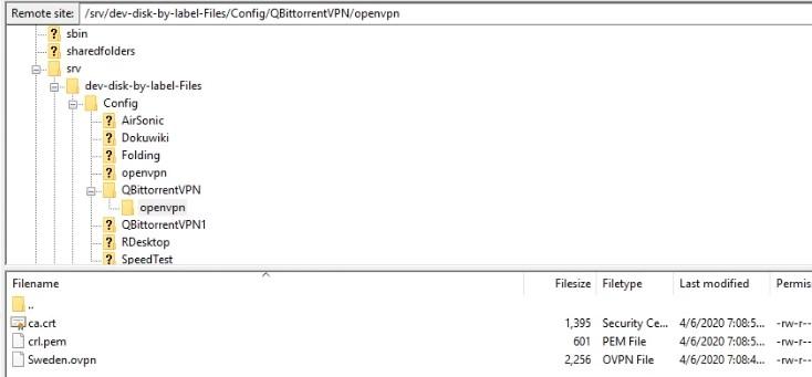 OVPN File