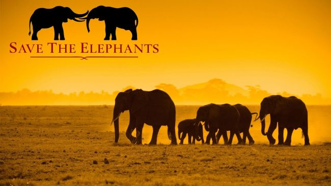 save the elephants day