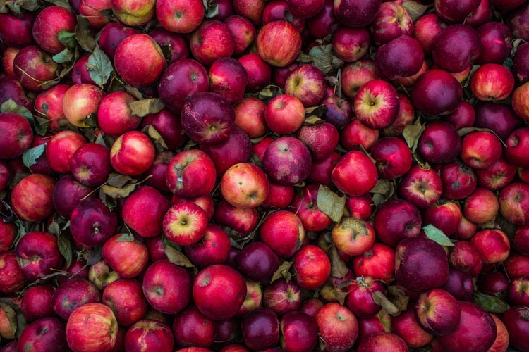What to Do With All of Those Apples You Just Picked: 5 Simple Recipes