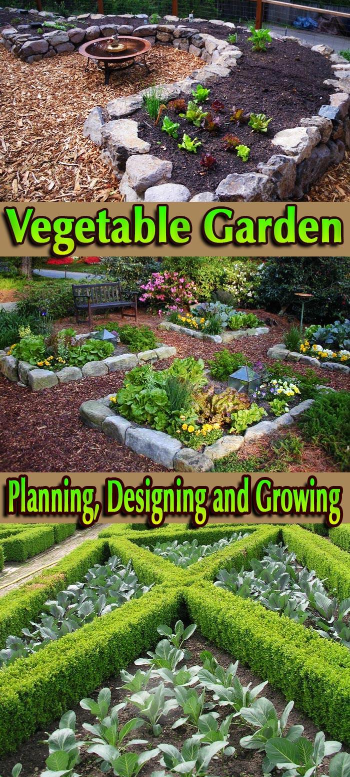 Vegetable Garden – Planning, Designing and Growing