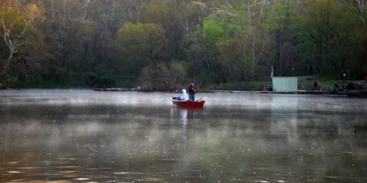 (April 17, 2009) Fly fishing for shad on the Potomac River off Fletcher's Boat House in Washington, D.C.