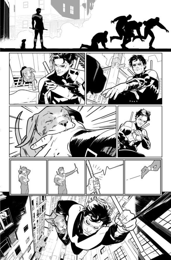 Nightwing Batgirl