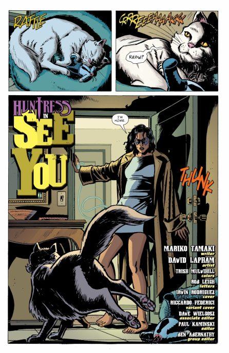 Batman Secret Files Huntress DC Comics