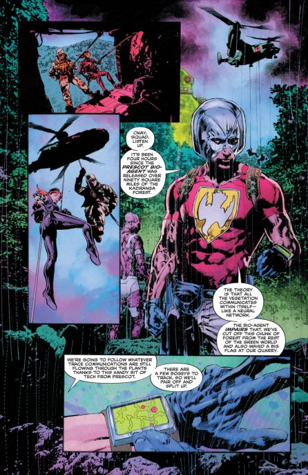 The Swamp Thing 6 DC COmics News