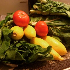 I volunteered at two farmers' markets through DC Produce Plus. The program ensures that low-income residents get access to fresh, local produce. The market manager gave me tomatoes, summer squash and five bunches of collard greens.