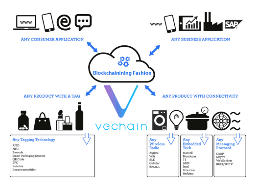 VeChain (VET): Revolutionizing Supply Chain & Procurement Industries
