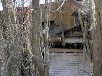 Segars Mill Pavilion