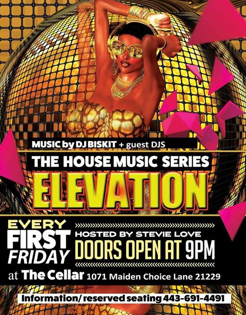 Elevation!! The House Music Series with DJ Biskit at The Cellar at Maiden Choice, Baltimore
