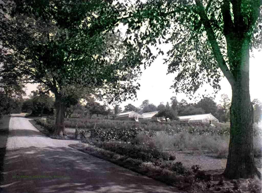 "Greenhouses at the Wing estate ""Sanandonan"""