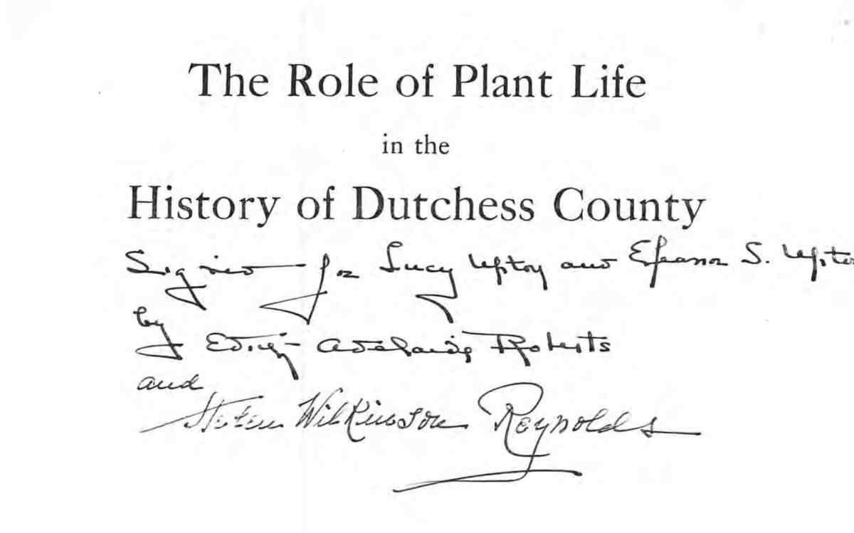 Role of Plant Life Cover