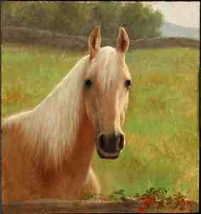 """Caroline's cousin Ambrose brought this horse, """"Buckskin"""" back from his service in the South in the Civil War. DCHS Colllections."""