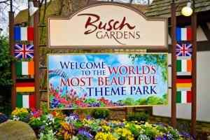 busch-gardens-dan-fecht