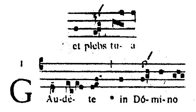 Voorbeeld 9: Graduale Romanum blz. 20 en 21