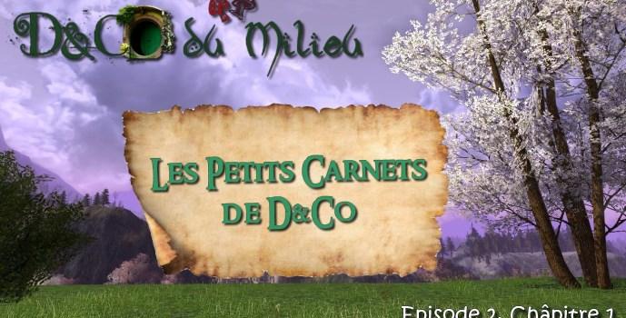 Episode 2: Les Petits Carnets de D&Co #1