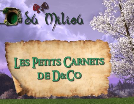 Episode 3: Les Petits Carnets de D&Co