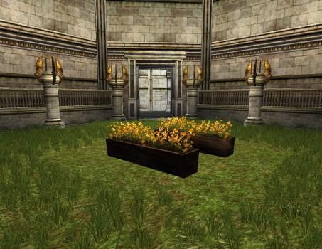Pot de fleurs orange