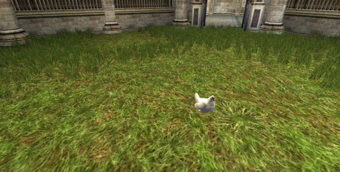 Poulet de pelouse blanc