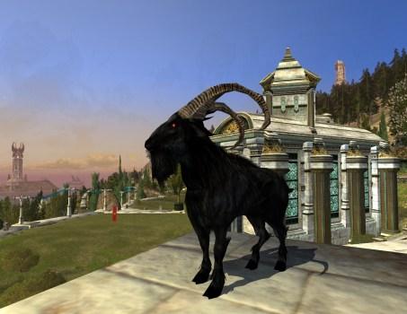 Chèvre Maléfique – Garde de propriété