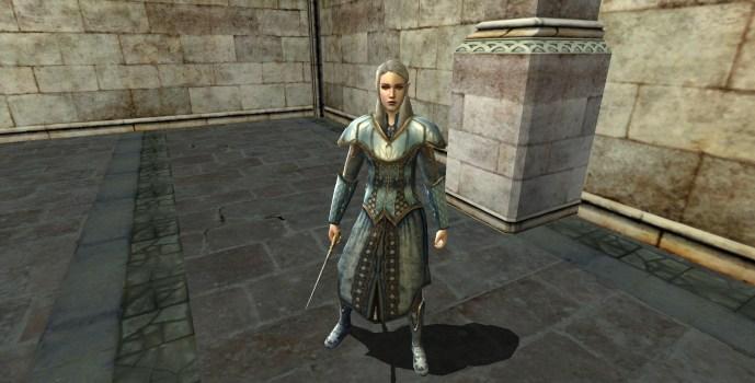 Visiteur Haut Elfe – Garde de propriété