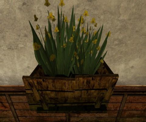Petit Bac d'Iris (Small Box of Gladdens)