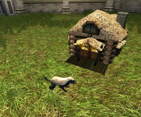 Maison de Blaireau (Badger House)