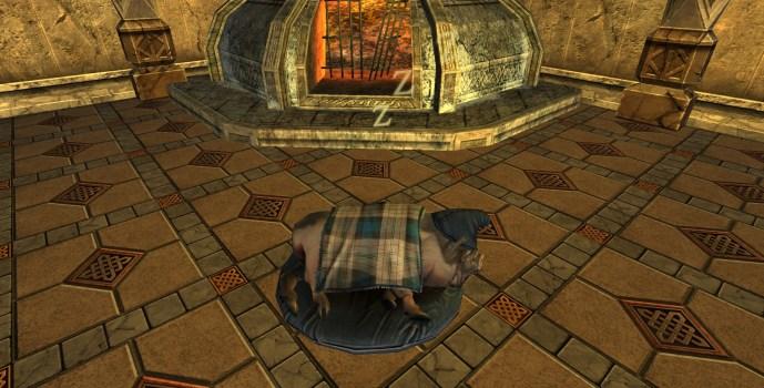 Cochon sur une Couverture (Pig in a Blanket)