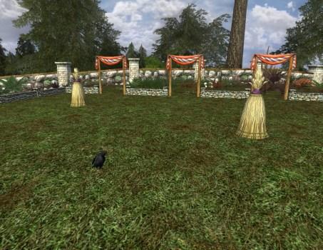 Grand terrain de chasse-poulet avec poulet à pattes noires