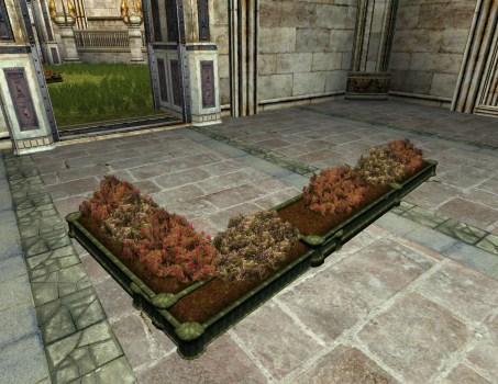 Jardinière modeste à étages en forme de L