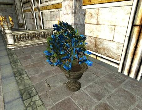 Jardinière de fleurs du Solstice d'été – Fleurs Bleues