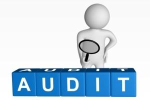 Audit Laporan Keuangan Bali