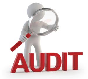 Konsultan Audit Bali