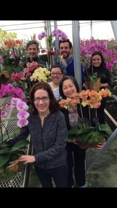 Le paradis des Orchidées