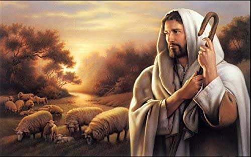 The Shepherd And You