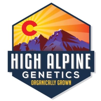 High Alpine Genetics High CBD Feminized and Regular Seeds