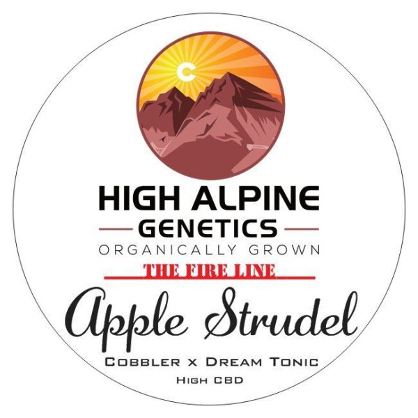 Apple Strudel (Cobbler x Dream Tonic) 10 Regular High CBD Seeds