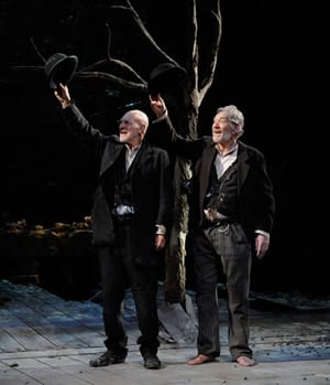 Patrick Stewart and Ian McKellen in Waiting for Godot (Photo: Sasha Gusov)