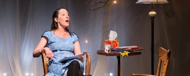 Deb Margolin in 8 Stops at Unexpected Stage (Photo: Lew Lorton)