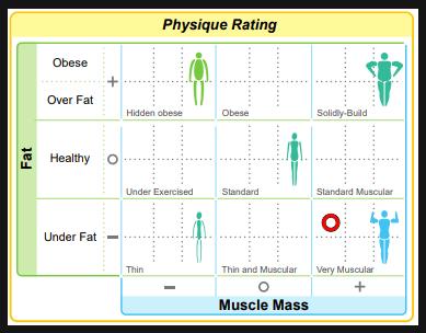 body-physique-data-graph