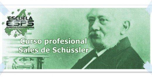 Curso de sales de Schüssler