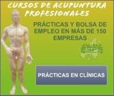 cursos de acupuntura profesionales