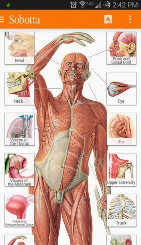 Sobotta Anatomy Atlas V202 Unlocked