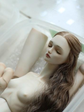 Venus Sleeping Ver. No.5 Jul, 2016