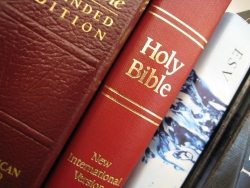bibles1web.jpg