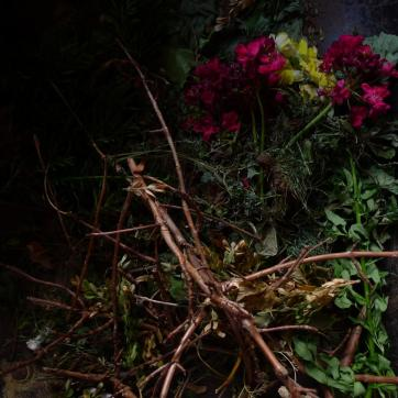 Harlan_David_05_Flowers 2012 [005a]c